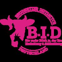 BID_Logo_magenta-295x300