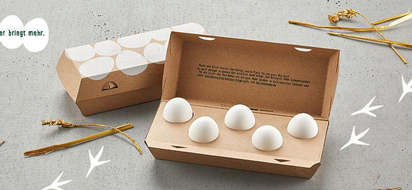 5 Eier fordern den Industriestandard heraus