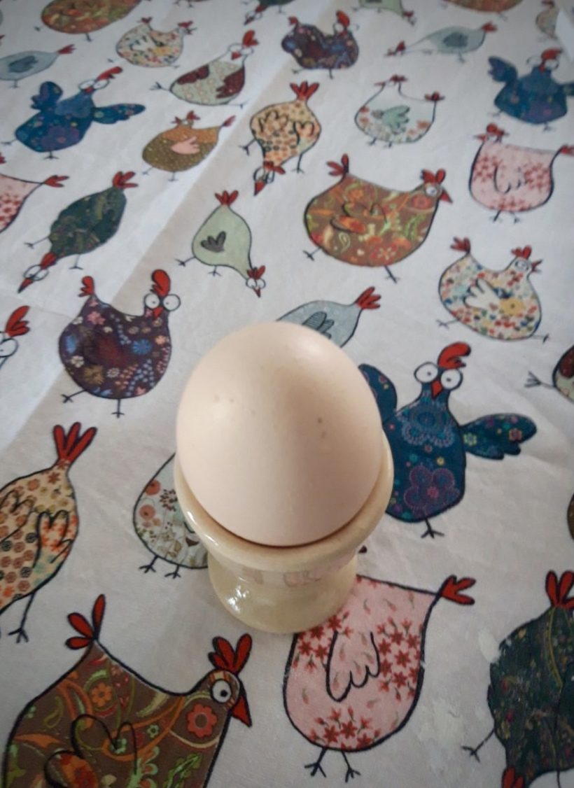 Frohe Ostern – Eierproduktion 2021